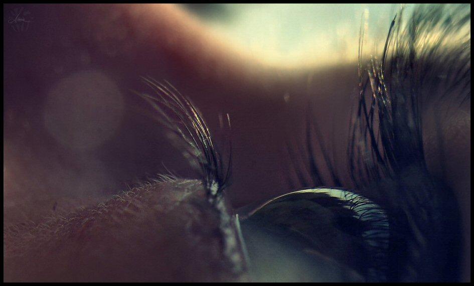 Daydream_1_by_DianaCretu