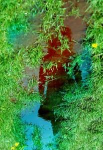 Mirrorside_by_DianaCretu