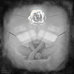 rose_by_marinacoric-d6lmtq6