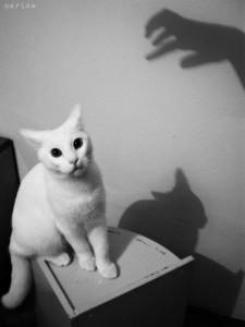 the_horror_by_marinafoto-d3ntsc7