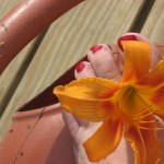 PHOTO my toes author photo