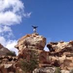 A.S. Coomer rocks