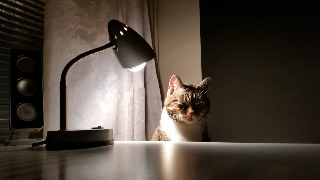 tanning_lamp_by_notnowcato-d9os0hp